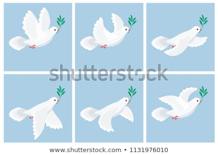 white dove holding green twig international peace day concept stock photo © orensila