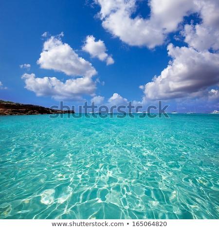 Formentera Cala Saona mediterranean best beaches Stock photo © lunamarina