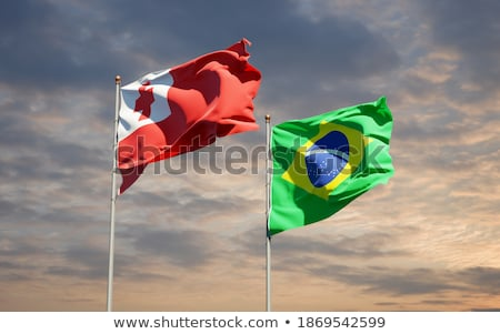 Бразилия Тонга флагами головоломки изолированный белый Сток-фото © Istanbul2009