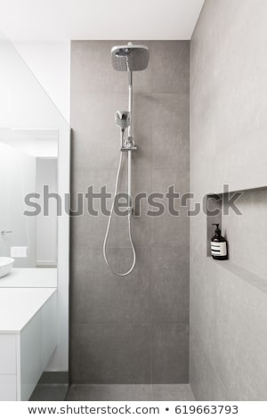 luxurious shower room stock photo © jrstock