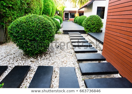 Garden stone path with pebble stone Stock photo © punsayaporn