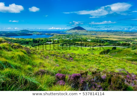 view to lake and hills at connemara in ireland stock photo © dolgachov