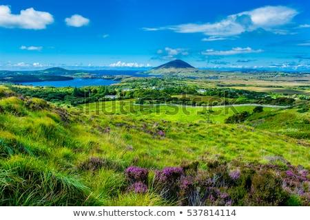 view to lake and hills at connemara in ireland stock photo © dolgachov