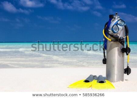 Mélyvizi búvárkodás oxigén egymásra pakolva kész búvárkodik sport Stock fotó © 5xinc