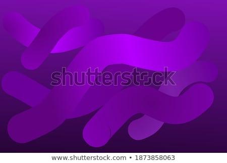 Lila vektor sablon absztrakt hajlatok vonalak Stock fotó © fresh_5265954