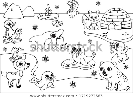 Penguins and owl by the igloo Stock photo © bluering