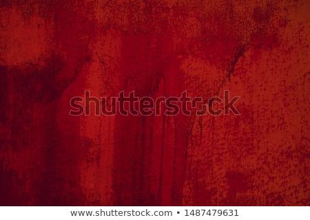 véres · festék · lédús · piros · csobbanás · fekete - stock fotó © fisher