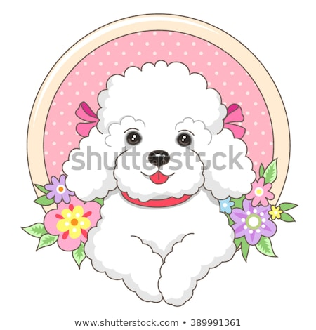 Cute girl and fluffy poodle dog Stock photo © bluering