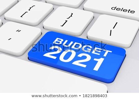 Költségvetés közelkép kék billentyűzet gomb 3D Stock fotó © tashatuvango