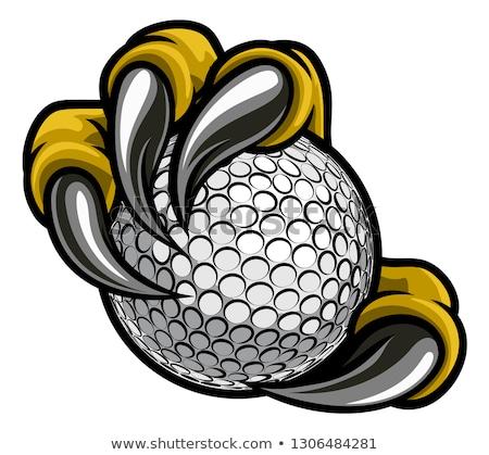 Orzeł golf sportowe maskotka zły zwierząt Zdjęcia stock © Krisdog