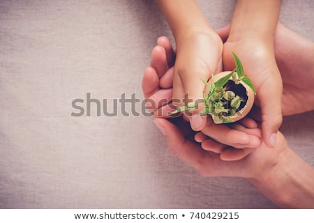 corporate social responsibility   business concept stock photo © tashatuvango