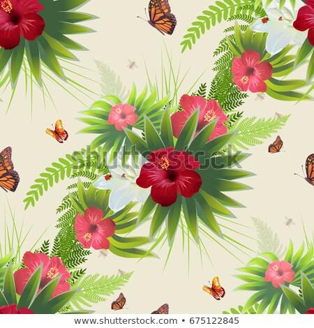 Rojo hibisco flor hojas verdes mariposas sin costura Foto stock © orensila