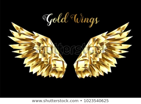 Gold polygonal wings Stock photo © blackmoon979