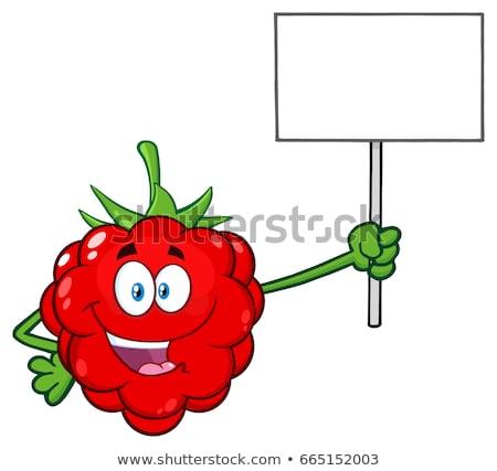Rojo frambuesa frutas mascota de la historieta carácter Foto stock © hittoon
