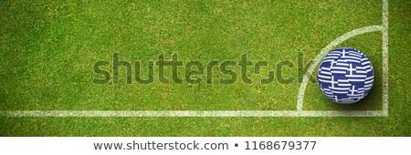 футбола Греция цветы зеленый текстуры Футбол Сток-фото © wavebreak_media