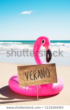 Tekst spaans flamingo zwemmen ring rustiek Stockfoto © nito