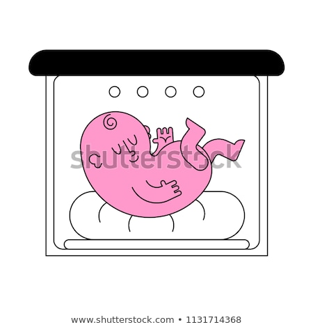 Baby hatch isolated. Baby box for Newborn. Embryo vector illustr Stock photo © popaukropa