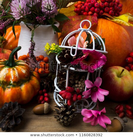 Thanksgiving centerpiece with white birdcage and pink flowers Stock photo © TasiPas