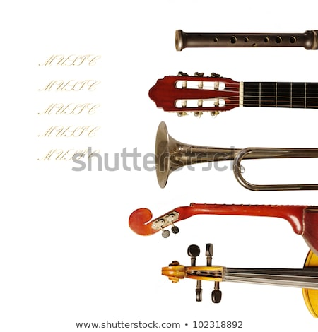 Background design with instrument for symphony orchestra  Stock photo © colematt