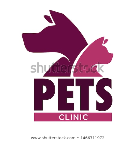 Veterinarian Doctor in Vet Clinic with Patient Stock photo © robuart