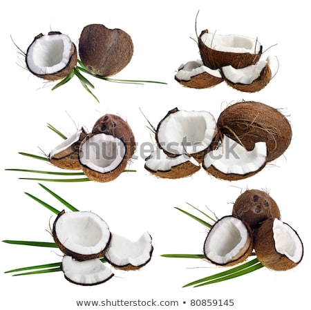 set of coconut icon broken coconut and leaf isolated stock photo © marysan