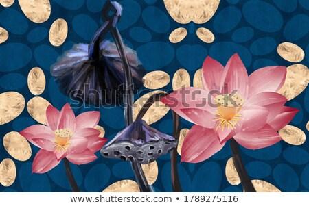 Agua Lily lago estanque rosa gotas de agua Foto stock © szefei
