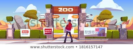 Dierentuin teken natuur illustratie hout landschap Stockfoto © colematt