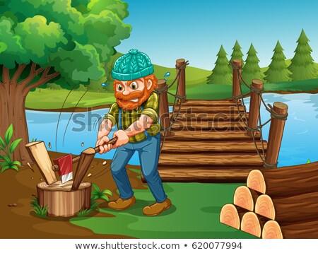 Tarcica drewno opałowe dziedzinie ilustracja drzewo drewna Zdjęcia stock © colematt