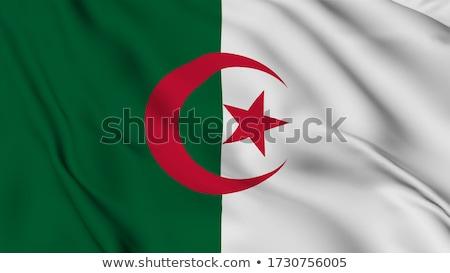 Гранж флаг Алжир вектора Сток-фото © nazlisart