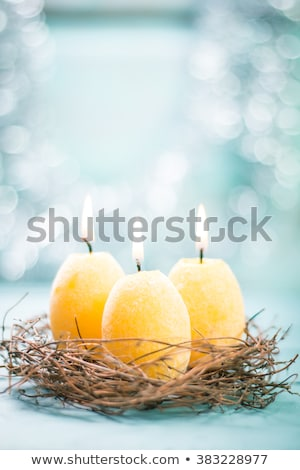 Quail eggs in the nest on wooden background with willow branch. Stok fotoğraf © Illia