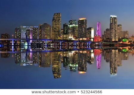 Florida · witte · vakantie · knop · paspoort - stockfoto © iofoto