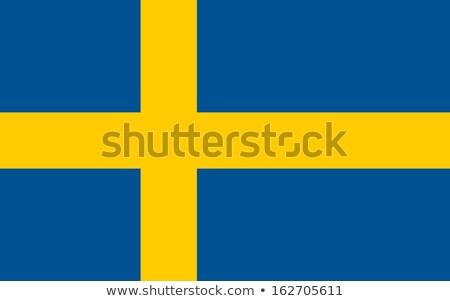 Reich Schweden Flagge trocken Erde Boden Stock foto © grafvision