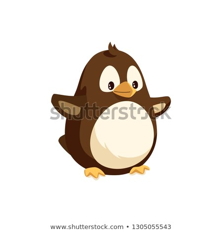 Penguin Seabird with Side View, Arctic Vector Stock photo © robuart