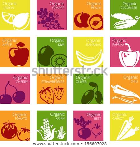 Szőlő friss dzsúz gyümölcsök recept vektor Stock fotó © robuart