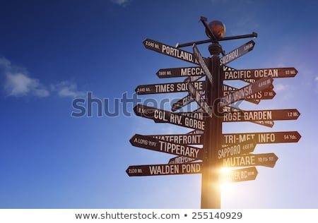 Signpost in dawn light Stock photo © jsnover