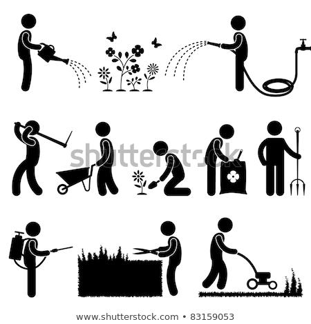 ストックフォト: 農家 · 水まき · 植物 · アイコン · 孤立した · ベクトル