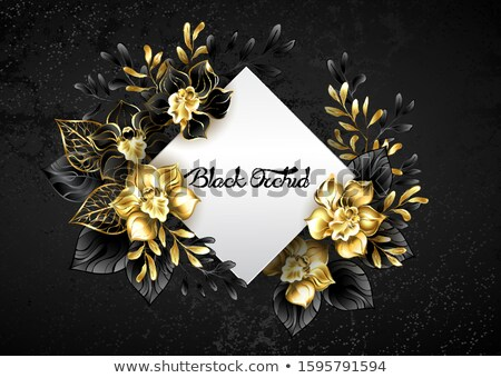 White rhombus with black orchids Stock photo © blackmoon979