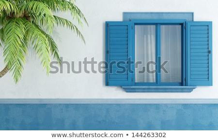 Klasszikus kék zsalugáter régi ház kilátás ház Stock fotó © boggy