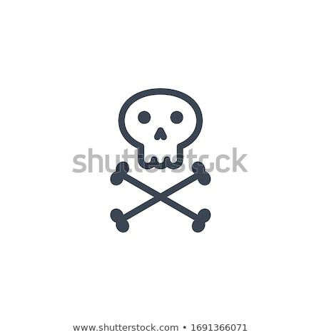 Crânio ossos vetor ícone isolado branco Foto stock © smoki