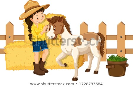 Farmgirl and cute pony on white background Stock photo © bluering