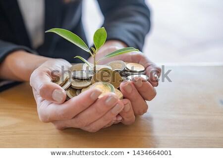 Hand planting Euro banknotes Stock photo © erierika