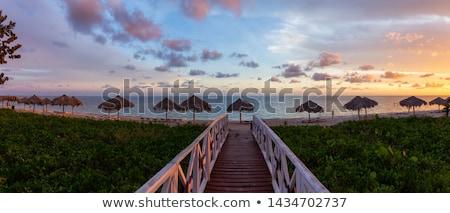praia · palavra · escrito · praia · verão · assinar - foto stock © fer737ng