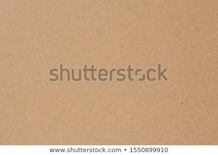 Luz marrom papiro folha quadro completo pormenor Foto stock © prill