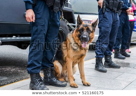 Anti terror police force Stock photo © lirch