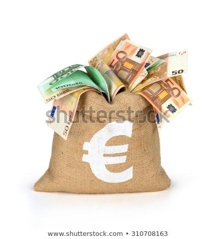 Money bag with euro stock photo © rufous