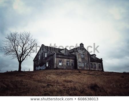 külső · elhagyatott · ház · külső · ház · préri · Saskatchewan - stock fotó © pictureguy