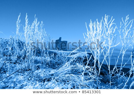 Christmas dag kasteel strand sneeuw Stockfoto © morrbyte