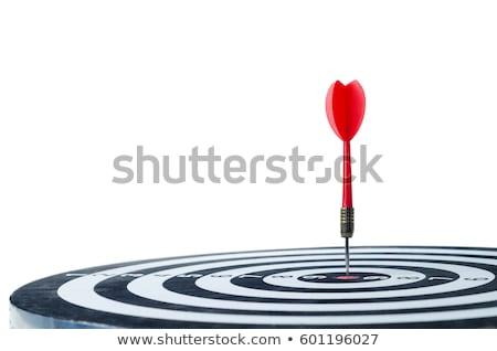 Red darts target aim on white background Stock photo © ozaiachin
