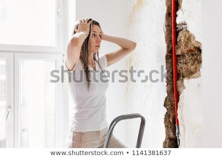 стены кирпичных плесень серый рок Сток-фото © pzaxe