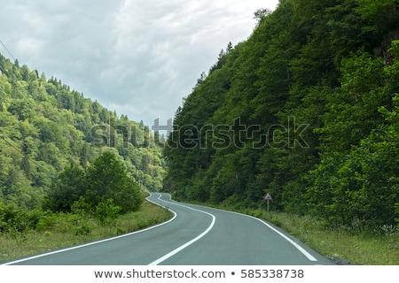 vrachtwagen · auto · weg · hdr · afbeelding · hemel - stockfoto © ruzanna